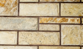 Natural Mushroom Stone - TROPICAL BEIGE
