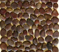 PEBBLE-RED-BROWN-BUMPY-Copy